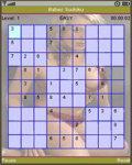 Babes Sudoku Free screenshot 1/3