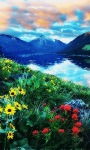 Hill Flower Live Wallpaper screenshot 2/3