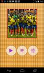 Ecuador Worldcup Picture Puzzle screenshot 2/6