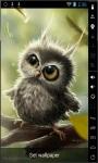 Funny Little Owl Live Wallpaper screenshot 1/2