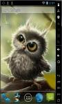 Funny Little Owl Live Wallpaper screenshot 2/2