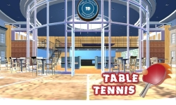 Ping Pong tabel tennis 3D screenshot 1/5
