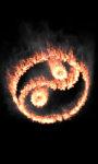 Burning jing jang lwp Free screenshot 5/5