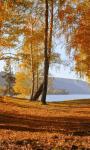 Autumn wallpaper images screenshot 1/4