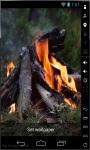 Real Campfire Live Wallpaper screenshot 1/2