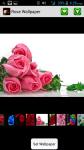 Rose HD Wallpaper screenshot 1/4
