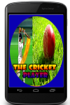 Cricket Player in the World screenshot 1/3