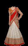Chaniya choli suit photo images pic screenshot 3/4