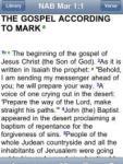 NAB Bible for BibleReader screenshot 1/1