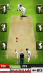 Cricket Master Blaster - Free screenshot 3/4