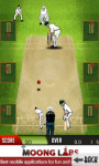 Cricket Master Blaster - Free screenshot 4/4