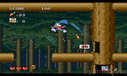 Tiny Toon Adventures Hidden Treasure screenshot 3/5