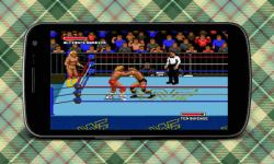 Sammer Slam Masters screenshot 2/4