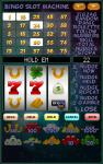 Bingo Slot Machine screenshot 5/5