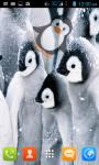 Penguins Live Wallpaper Free screenshot 1/4