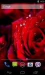 Rose 3D Parallax Live Wallpaper screenshot 4/4
