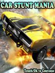 Car Stunt Mania screenshot 2/3