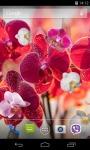 Orchid Live Wallpaper 3D screenshot 1/3