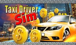 Taxi Driver Sim screenshot 1/3