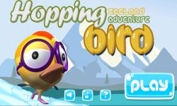 Hopping Bird iceland adventure screenshot 1/6