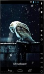 Alone In Winter Live Wallpaper screenshot 2/2