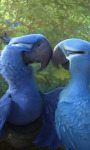 Rio 2 Jigsaw Puzzle 4 screenshot 1/4