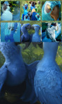 Rio 2 Jigsaw Puzzle 4 screenshot 3/4