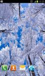 Winter HD Wallpapers Col1 screenshot 3/6