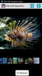Free Fish Aquarium screenshot 1/4
