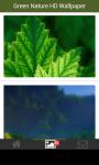 Green Nature HD Wallpaper screenshot 5/6