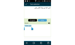 English to Urdu Pakistan Translator screenshot 2/5