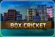 BOX-CRICKET screenshot 5/5