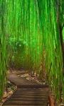 Bamboo Way Live Wallpaper screenshot 2/3
