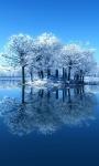 Beautiful Winter Pictures Wallpaper screenshot 1/6