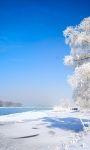 Beautiful Winter Pictures Wallpaper screenshot 3/6