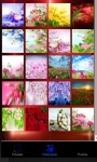 Flowers Live Wallpaper Flowers Games screenshot 1/4