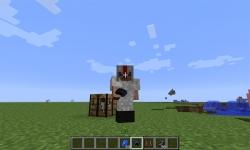 Assassin Mod for Minecraft screenshot 1/4