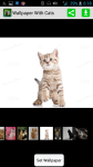 Wallpaper With Cats screenshot 1/4