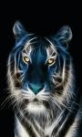 Lighting Tiger Live Wallpaper screenshot 2/3