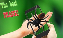 Scary Spider AR - Prank joke screenshot 3/3