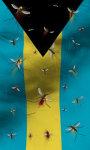 Bahamas flag live wallpaper Free screenshot 2/5