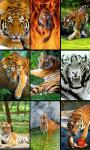 Animal Photo Puzzle screenshot 3/4