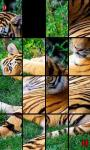 Animal Photo Puzzle screenshot 4/4