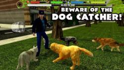 Stray Dog Simulator top screenshot 3/6
