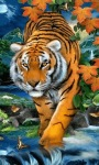 Beautiful Tiger LWP screenshot 1/3