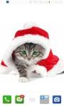 Beautiful HD Christmas Wallpapers screenshot 3/6