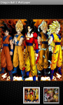 Dragon Ball Z Wallpapers HD screenshot 2/6