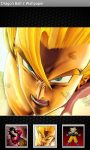 Dragon Ball Z Wallpapers HD screenshot 3/6