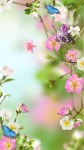 Beautiful Flowers Wallpaper Pic screenshot 3/3
