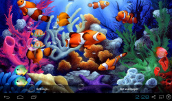3D Koi Aquarium Live Wallpaper screenshot 2/3